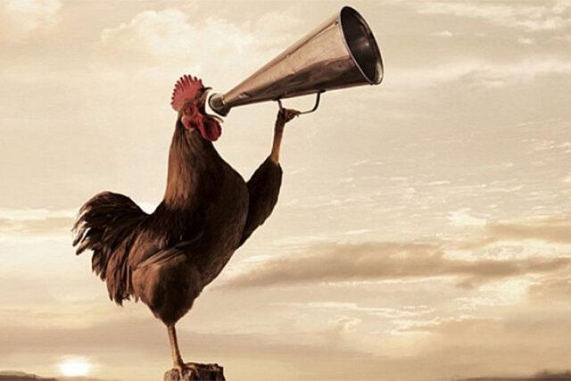 Gallos vocales. ¿Por qué me salen gallos en la voz?